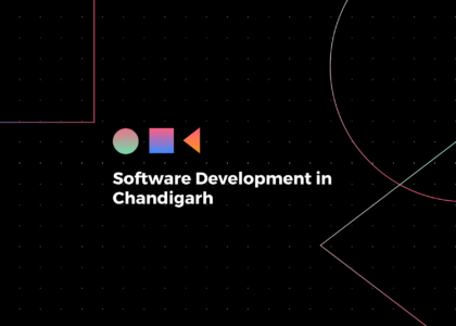Blog header for software development in Chandigarh post